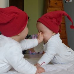 близнецы день сурка